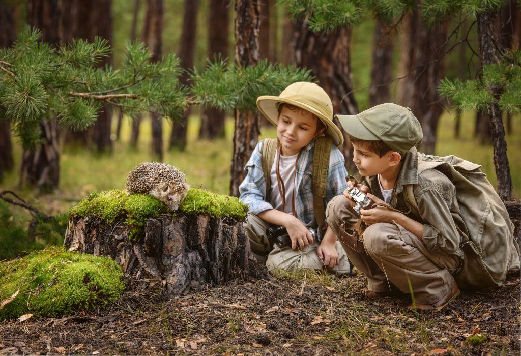 dzieci na wycieczce w lesie