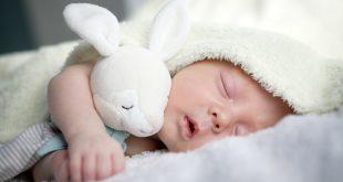 noworodek przytulony do maskotki śpiący w kocyku