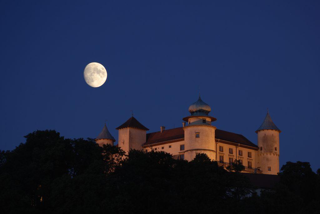 Nowy Wisnicz, Zamek.