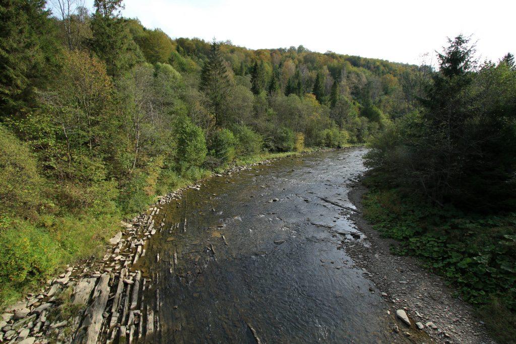 Wetlina Jaworzec