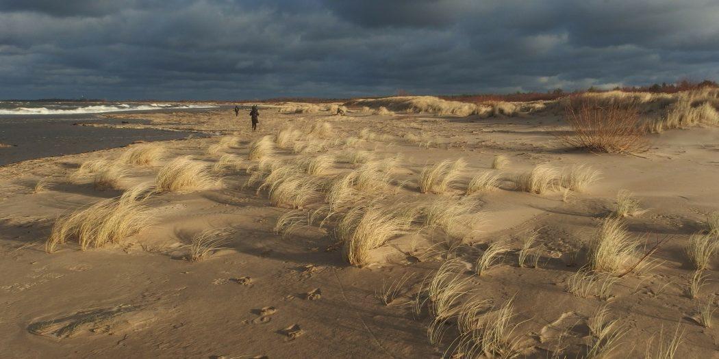 Wyspa Sobieszewska, Polska - wydmy nad morzem w słońcu przed burzą