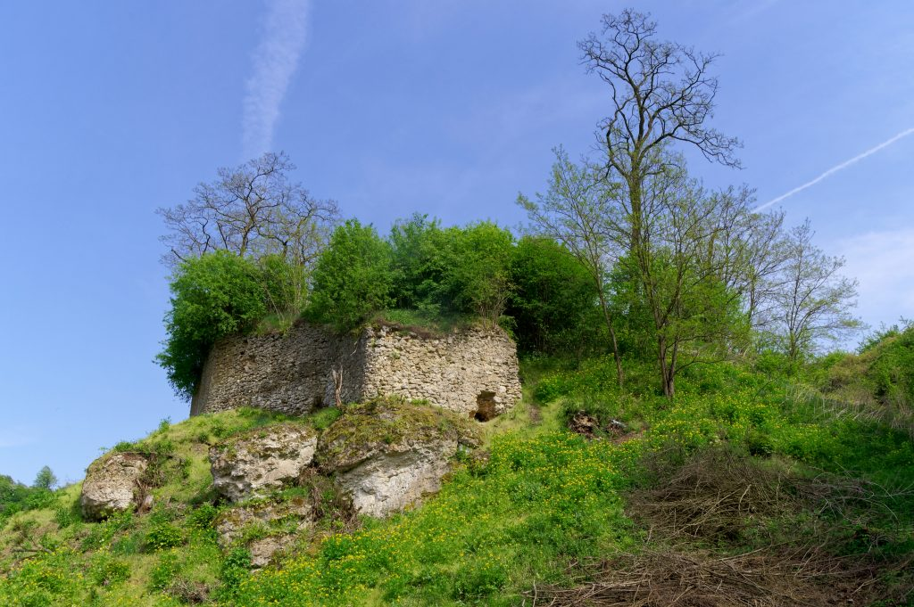 Zamek w Podgrodziu koło Ćmielowa