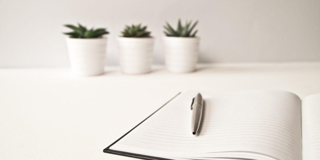 Notes i długopis na białym biurku z kaktusami