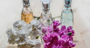 perfumy grupy zapachowe