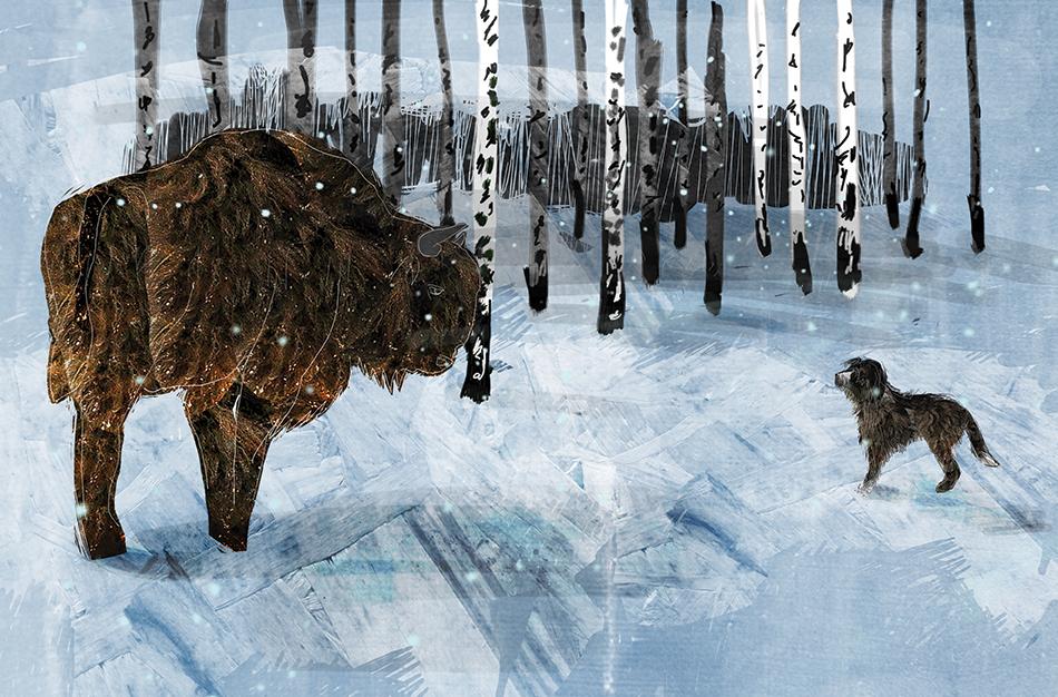 Adam Wajrak, Lolek ilustracje Mariusz Andryszczyk