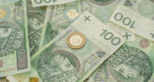 1 euro i 100 zł - pieniądze