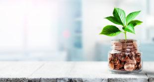 Roślinka wyrasta ze słoika z pieniędzmi