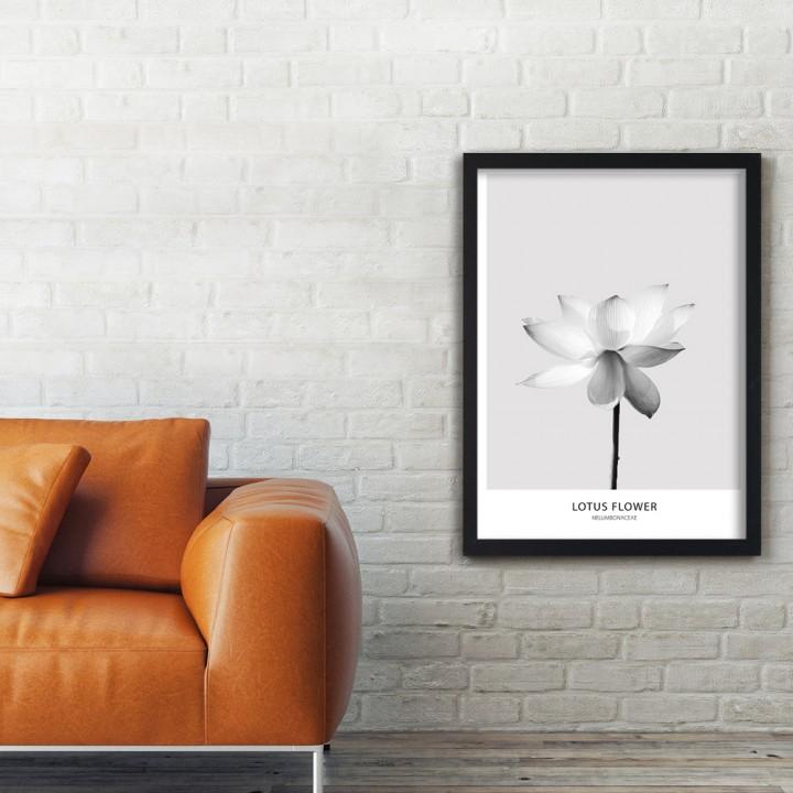 Kwiat lotosu - plakat
