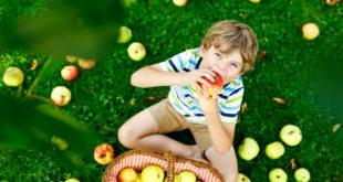 pasożyty u dzieci co robić