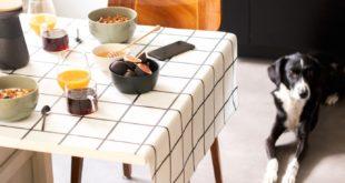 Stół nakryty obrusem