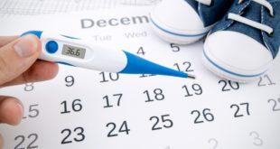 Kalendarz dni płodnych i owulacji