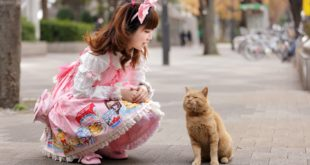 Japońska lolita