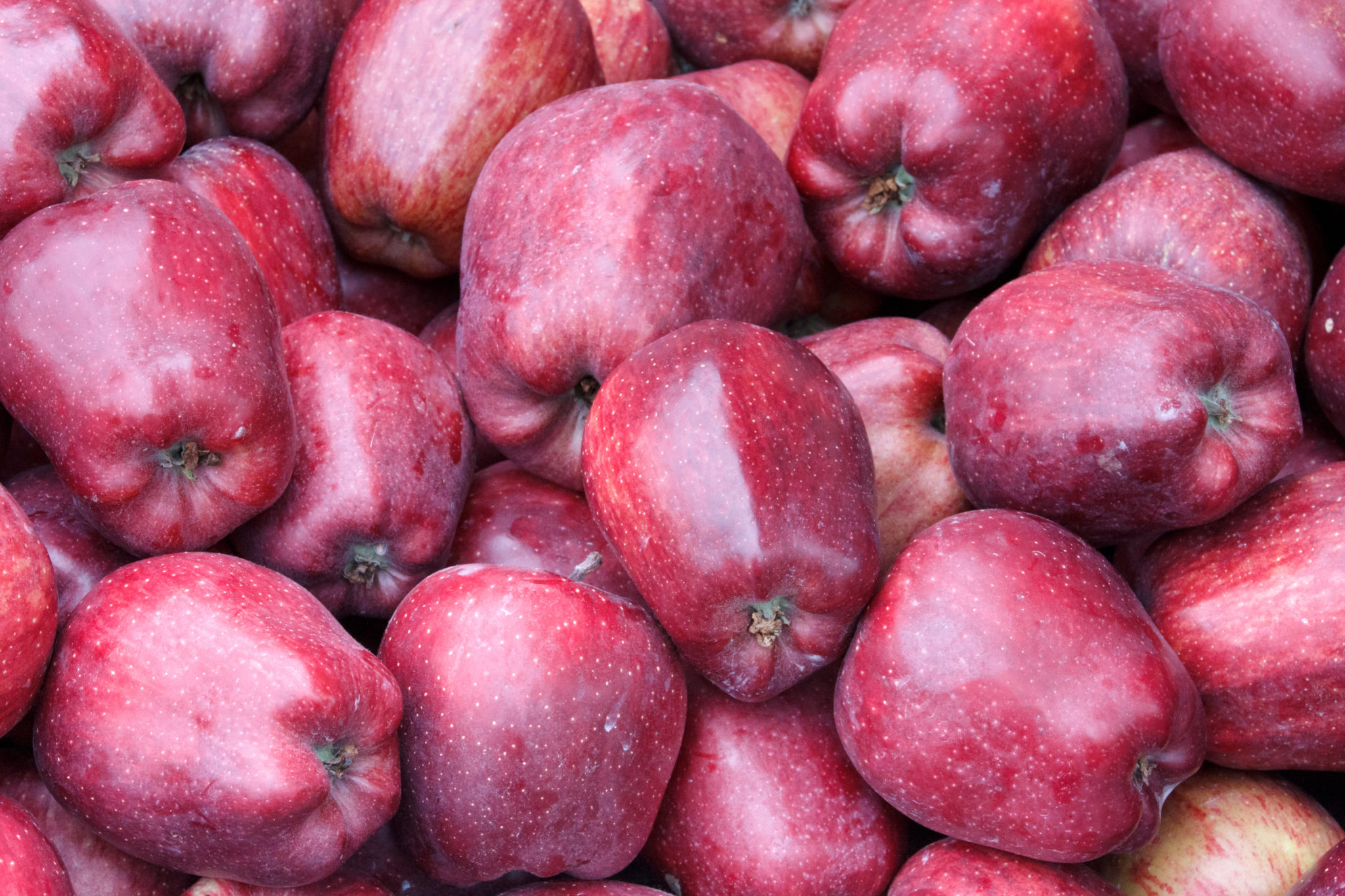 starking jabłka