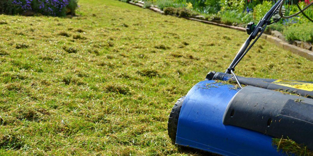 Porządki na trawniku wiosną