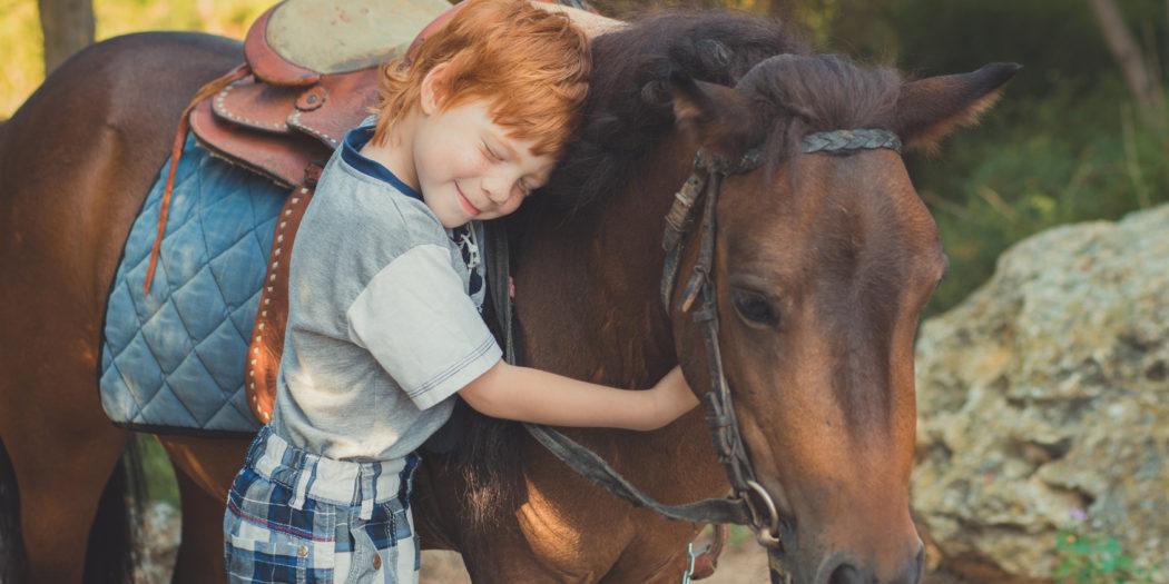 Koń dla dziecka