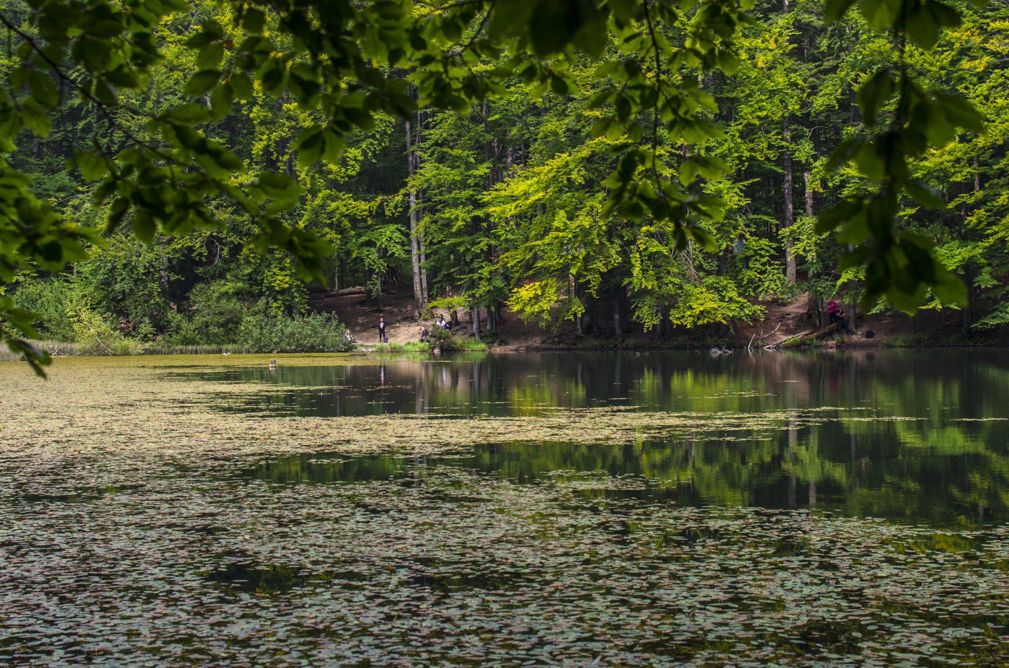 jeziorka duszatyńskie