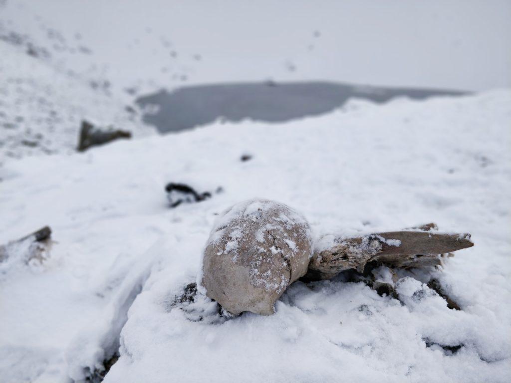 Jezioro Szkieletów Himalaje
