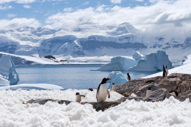 Turystyka ekstremalna to m.in. wyprawy na bieguny Ziemi