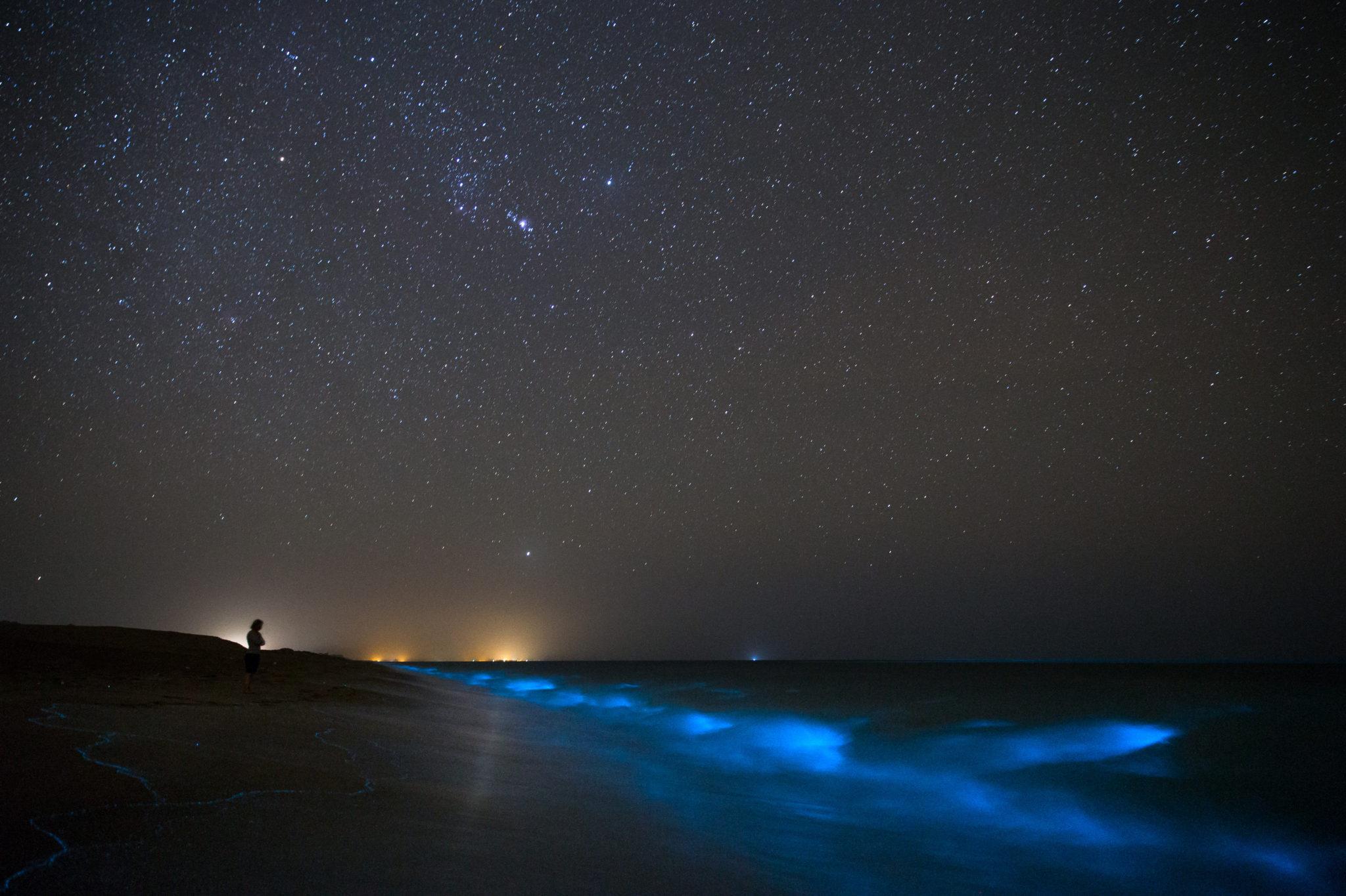 Bioluminescencja planktonu przy wyspie Larak, Iran