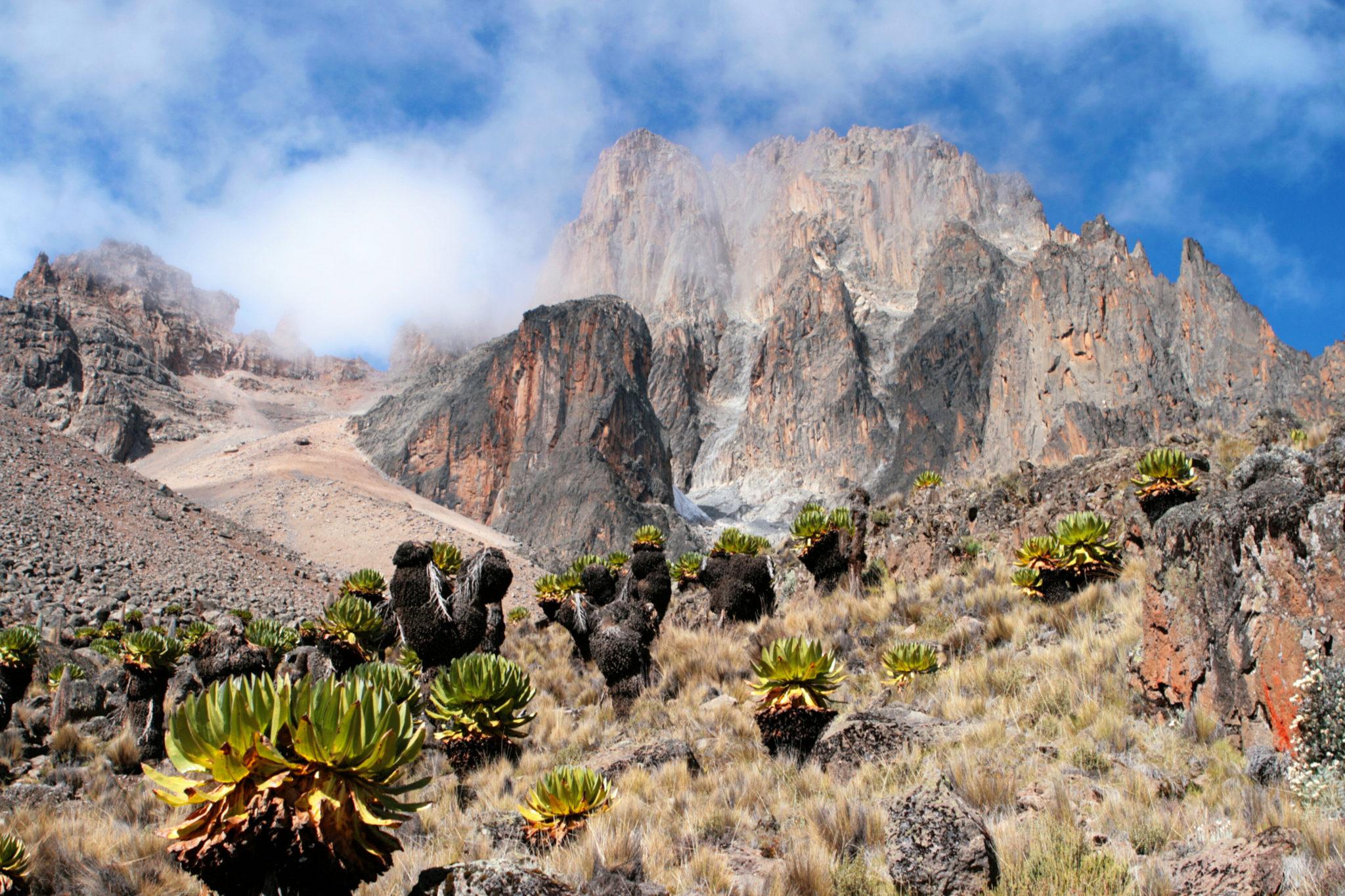Mount Kenya, Afryka