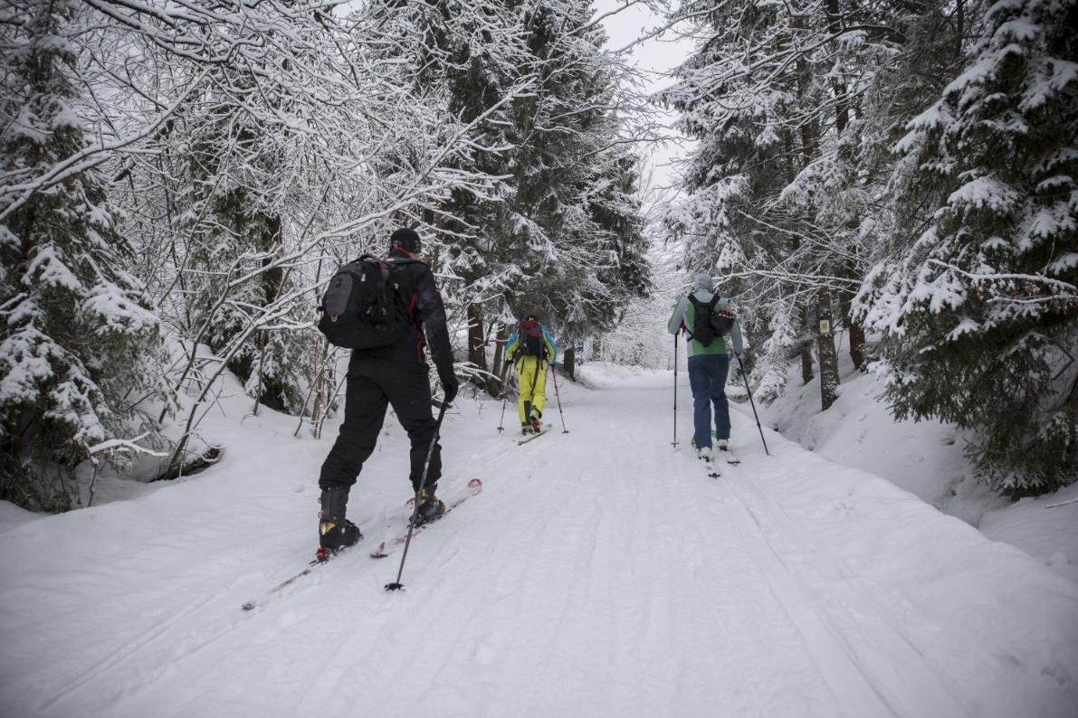 Skitouring - Rysianka w Beskidzie Żywieckim