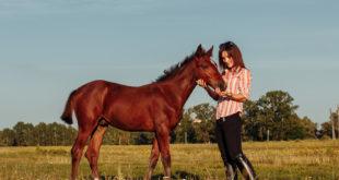 Kobieta z koniem na łące