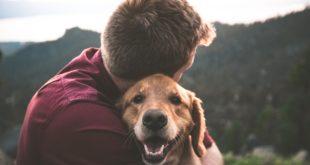 Pies w ramionach właściciela
