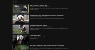 YouTube - wyniki wyszukiwania w serwisie