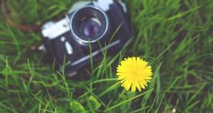 Aparat fotograficzny w trawie