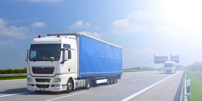 Kierowcy zawodowi podczas pracy