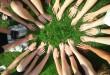 Grupa ludzi - dłonie i ręce