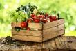 Warzywa na wiosnę