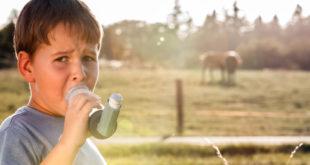 Alergia u dzieci