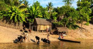 szczepienia przed wyjazdem w tropiki